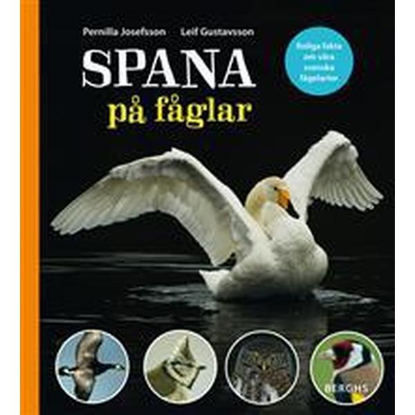 Spana på fåglar (Inbunden, 2015)