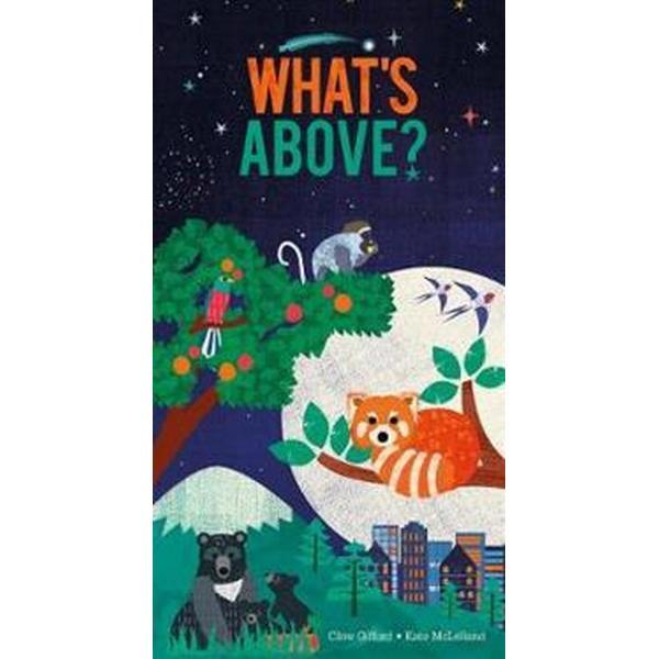 What's Above? (Övrigt format, 2017)