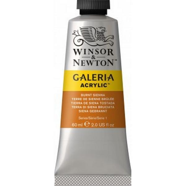 Winsor & Newton Galeria Acrylic Burnt Sienna 74 60ml