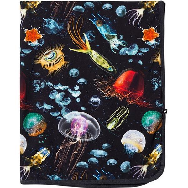 Molo Niles Jellyfish