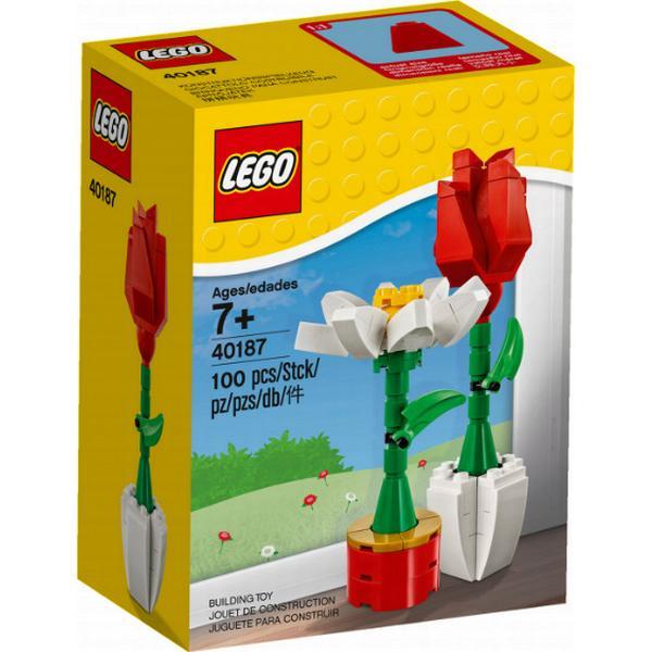 Lego Flower Display 40187