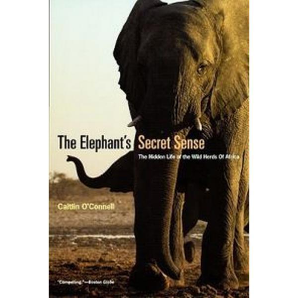 The Elephant's Secret Sense (Pocket, 2008)