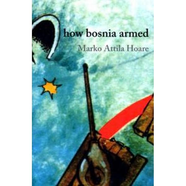 How Bosnia Armed