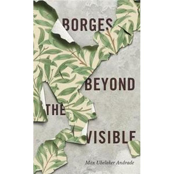 Borges Beyond the Visible