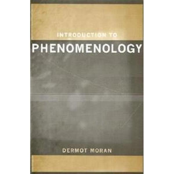 Introduction to Phenomenology (Pocket, 1999)